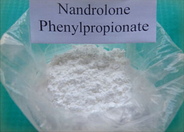 Cina Injectable Steroid Powder Nandrolone Phenylpropionate CAS 62-90-8 pemasok