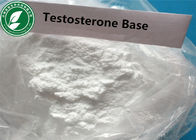 White Steroid Powder Testosterone Base Untuk Muscle Mass Cas 58-22-0